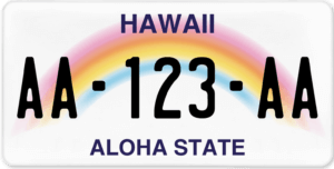 Plaque USA 30×15 Hawaii