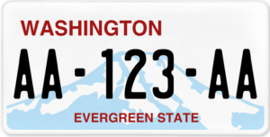 Plaque USA 30×15 Washington