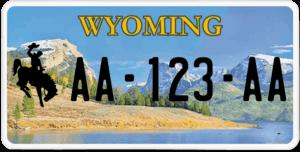 Plaque USA 30×15 Wyoming
