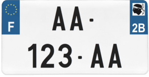 Plaque USA – 30×15 – SIV – 2b – Haute-Corse