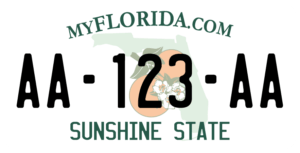 Plaque USA 30×15 Floride