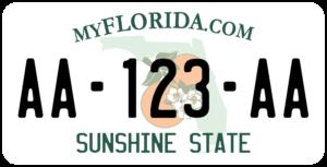 Plaque USA 30×15 Floride