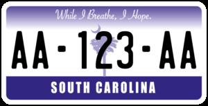 Plaque USA 30×15 Caroline du Sud Plaque USA – 30×15 – SIV