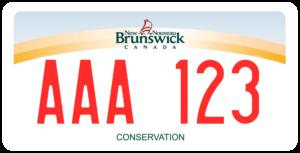 Plaque Canada 30×15 New Brunswick