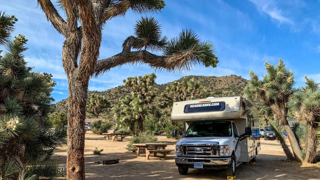 Tour du monde en camping-car : Quelles plaques d'immatriculation pour son road trip ? 🌍